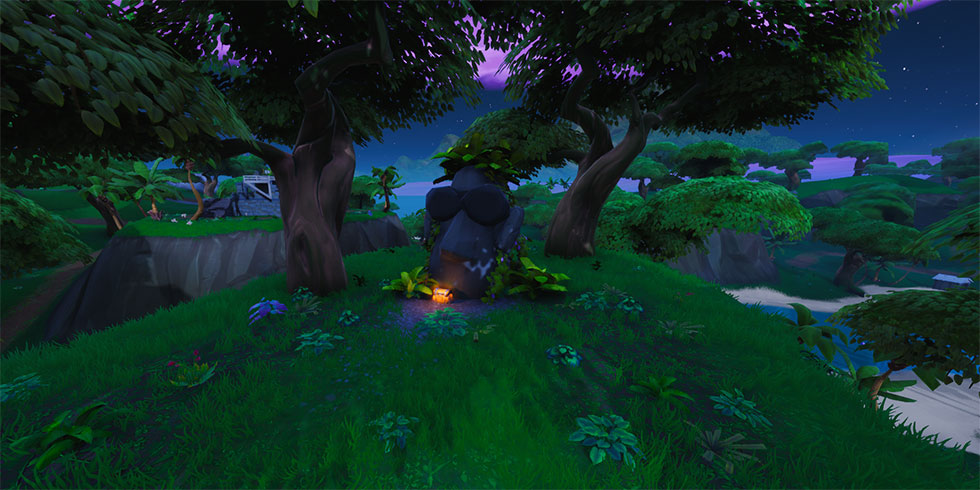 A Cabeça de Pedra está dentro da selva