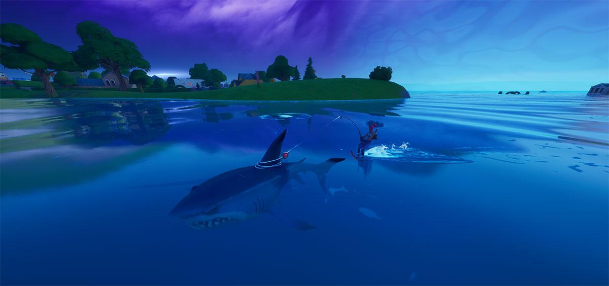 Quando o tubarão fisgar a isca, você será puxado automaticamente